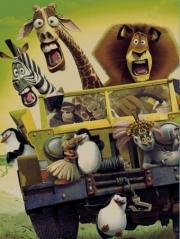 فرش اتاق کودک ماداگاسکار