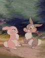فرش فانتزی خرگوش باهوش 1_3402
