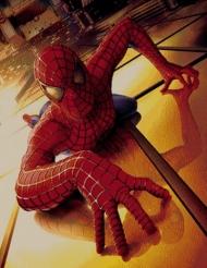 Spider man puppet carpet,, Toos Mashhad